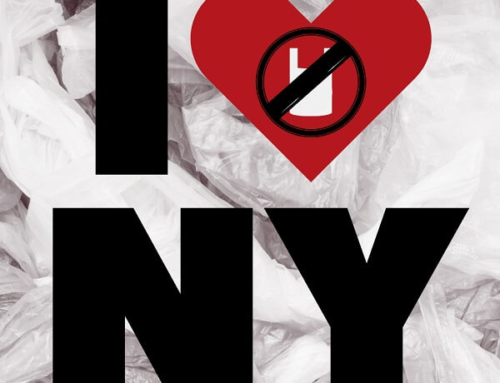 New York State to Ban Single-Use Plastic Bags