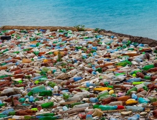 Companies Being Sued for Plastic Pollution