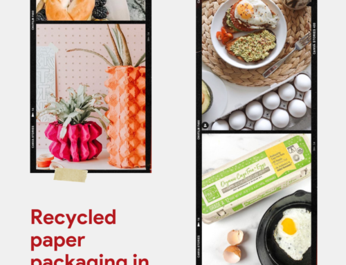 Spotted: You're Making the Switch to Recycled Paper Packaging